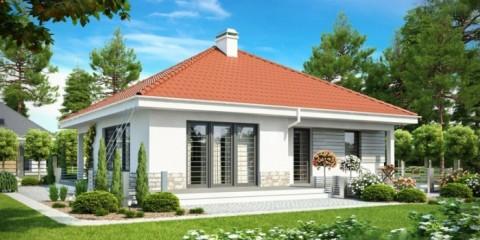 Одноэтажный трехкомнатный дом 100 кв.м